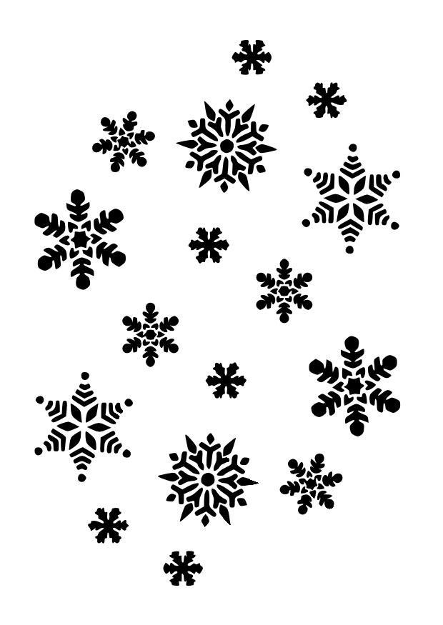 many black snowflakes.jpg