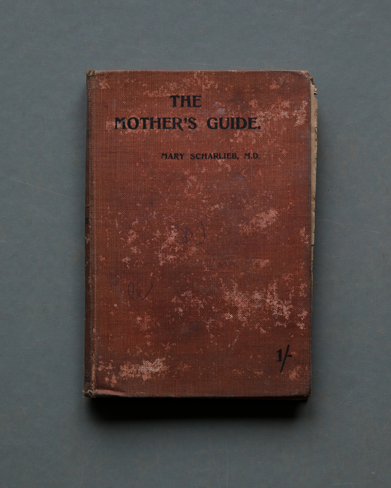 The Mother's Guide, 2017
