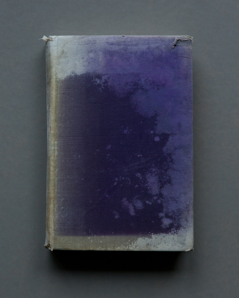 Purple Cover, 2017