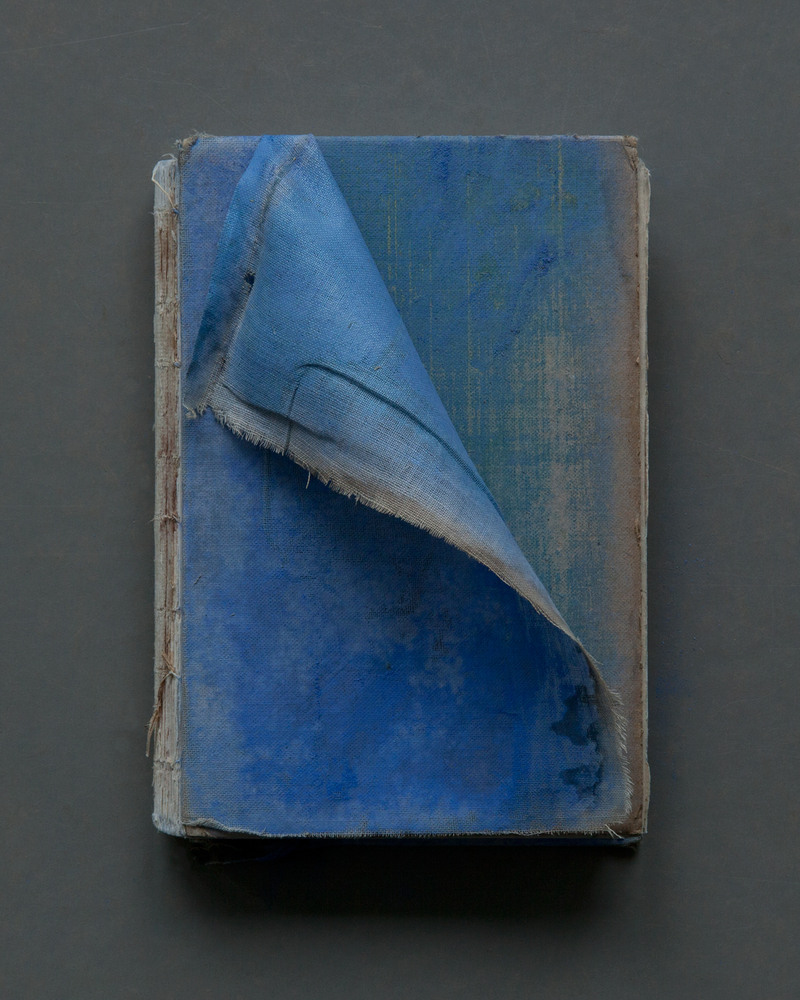Blue Cloth Cover, 2017