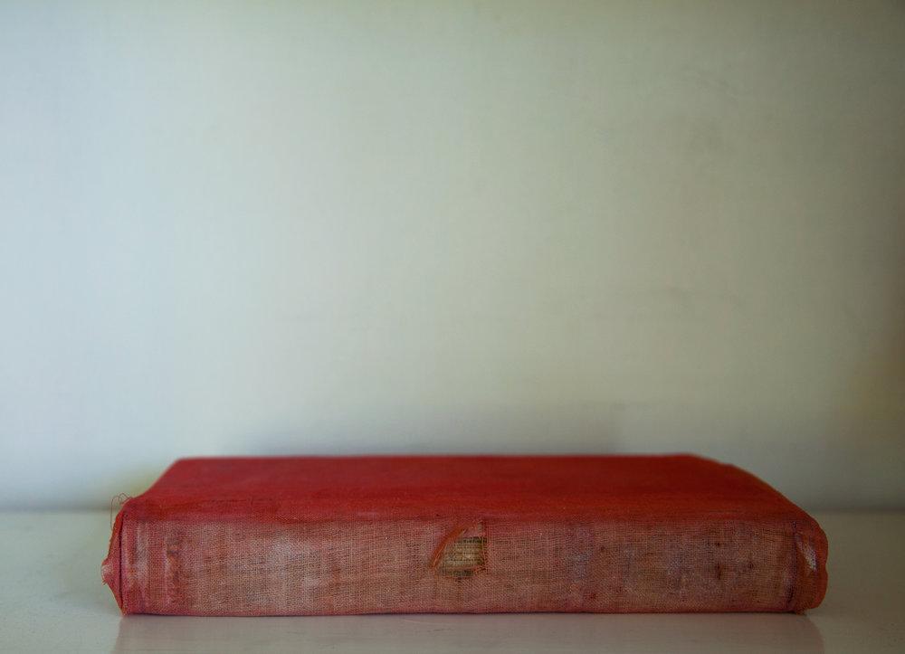 Red Flat Book, 2017