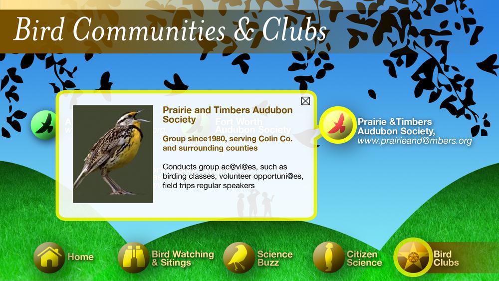 birdclub2-1.jpg