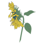 Sunflowers_Stage 1.png