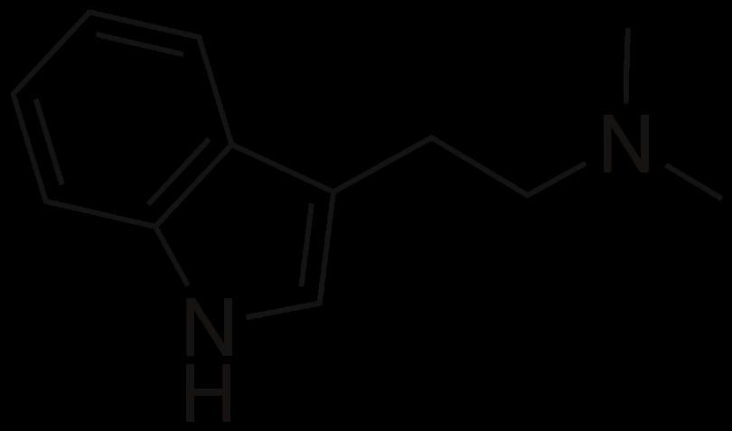 DMT Molecule.png