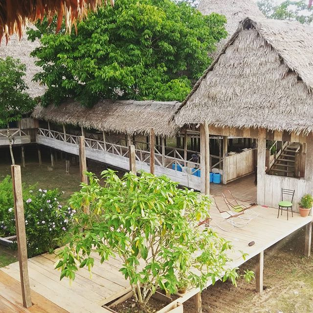 Arkana - a beautiful ayahuasca retreat center in the Amazon rainforest. Arkana is a space of pure love. If you want know more about my experiance at Arkana, check out my blog. 👉👉👉The link is in my bio ! . . . . #asahota #instadaily  #spiritual #wisdom #peace #love #higherconsciousness #writer #arkana  #lightworker  #meditation #psychedelic #goodvibes #ayahuasca #plantmedicine #5-Meo-DMT #dmt #tripreport #experiance #profound #blogger #sapo #medicine