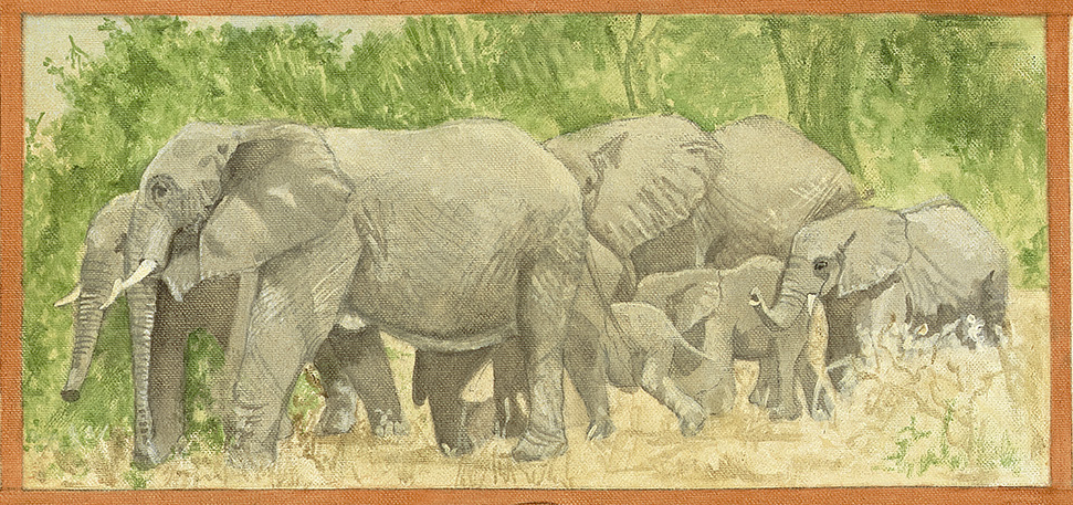Elephant Painting_proof_matriarch.jpg