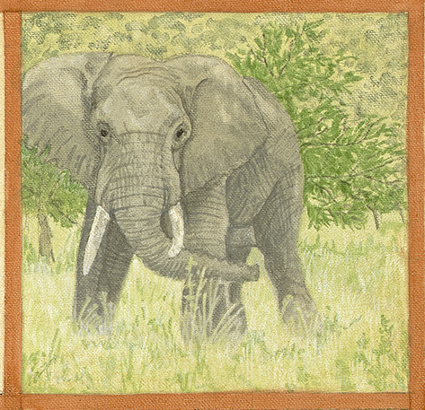Elephant Painting_proof_savannah elephant.jpg