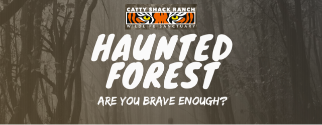 When: Select dates October 12-28 2018  Where: Catty Shack 1860 Starratt Road, Jacksonville, FL 32226  You know about Catty Shack, right? A big cat sanctuary right here in Jacksonville, with a mission to provide safe, loving forever homes to endangered big cats. Experience Catty Shack Halloween-style by strolling through the sanctuary's Trail of Fears. A costume contest, corn maze, crafts and games completes your night.