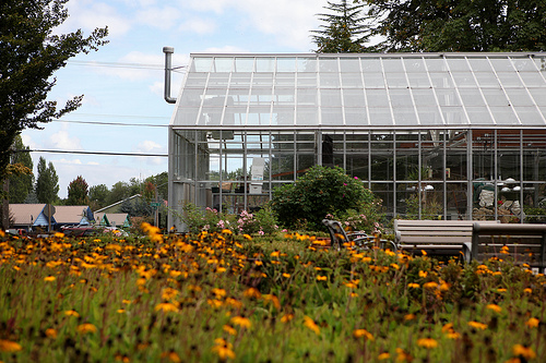 Pacific University greenhouse on the Forest Grove campus.