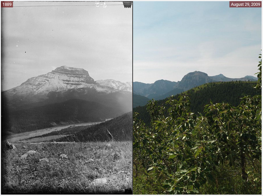 The Mountain Legacy Project has collected thousands of photos matching exactly photos taken by surveyors a century ago.