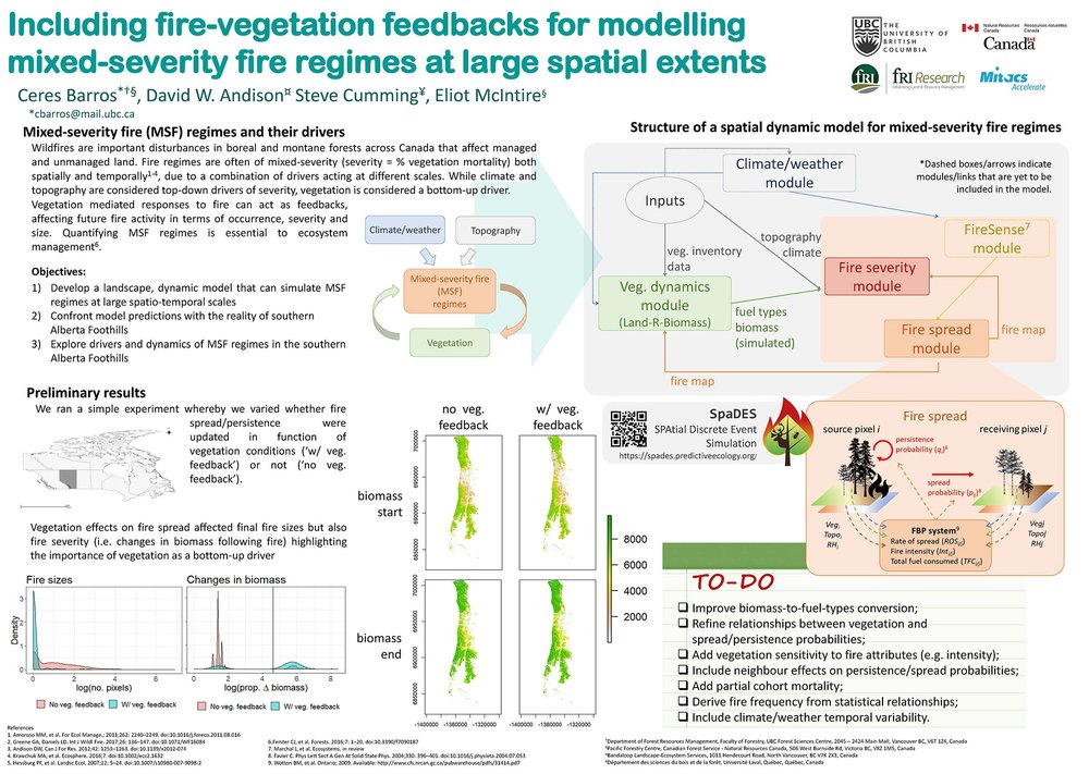 "Our poster, now in a readable format! Note that all results are preliminary, but the key message is that when we include not only the effects of fire on vegetation, but also the effects of vegetation on fire, it can change the expected fire properties like size and severity. Note the ""TO-DO"" list—I think I'll be very busy in the coming months!"