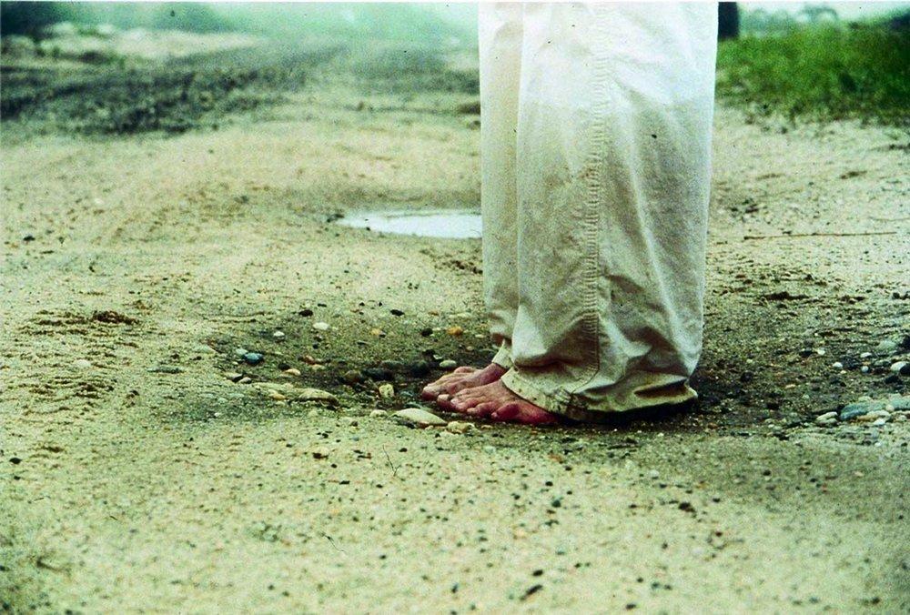 Jennifer Monick (2001)