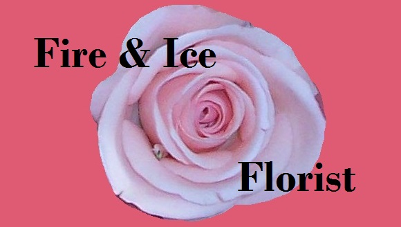 Fire and Ice Florist