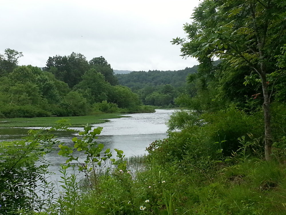 the greenbrier river in summer