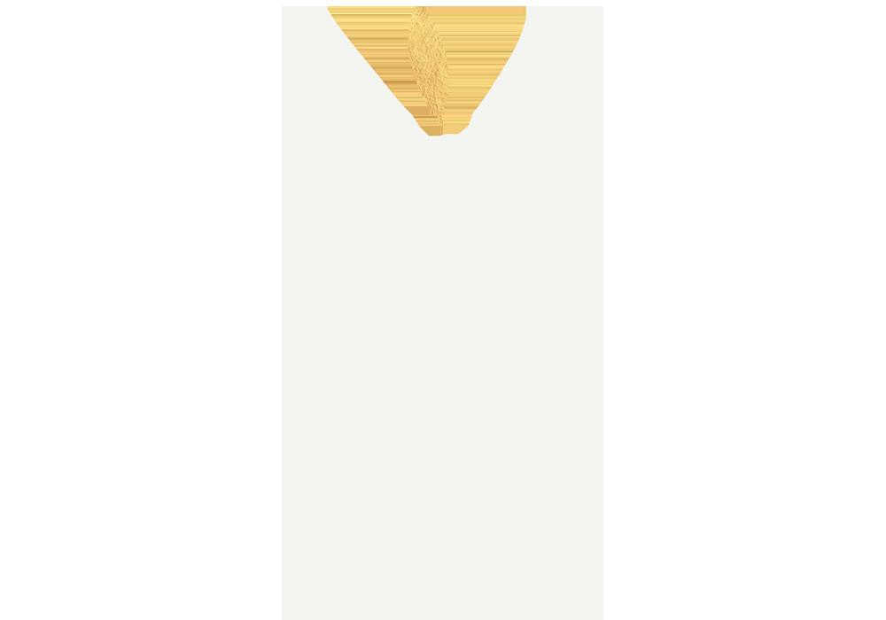 Indigo Logo WEB White Gold.png