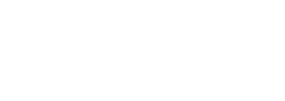 Any Old Home-logo-white_2000.png