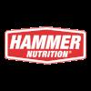 hammer_logo_transparent.png