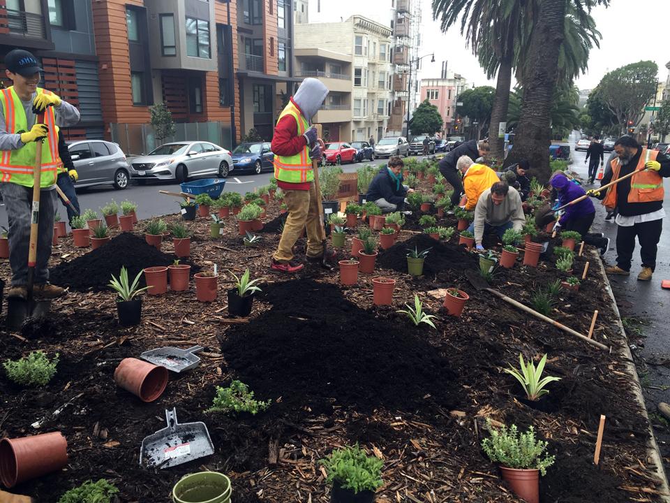 planting-day-11.jpg