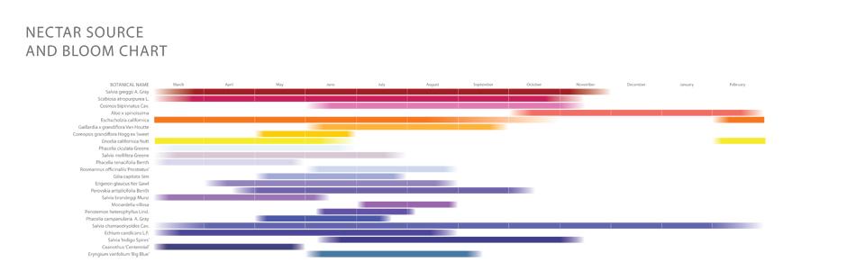 Bloom Chart.jpg