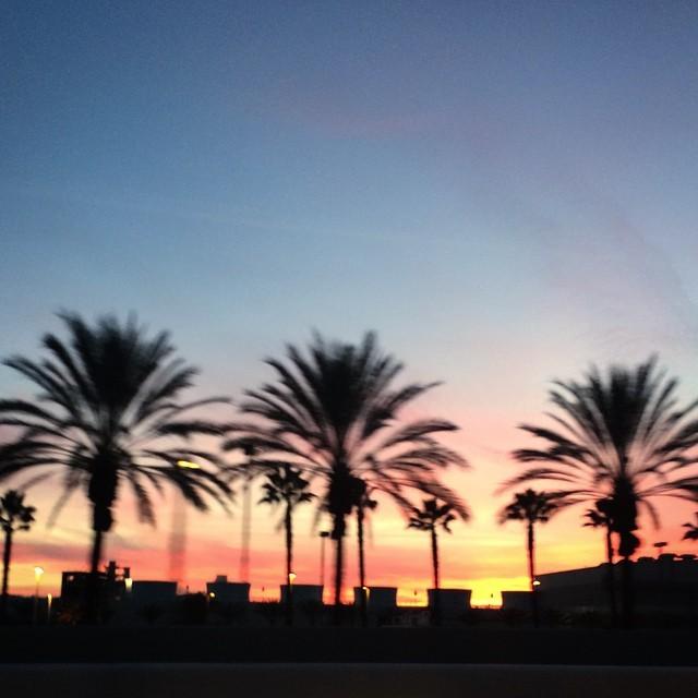#LA #nunezphotography #CA #love #sunset #photooftheday #photography #burbank
