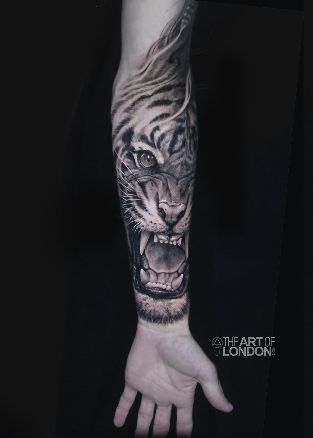 tiger portrait black and grey tattoo large.jpg