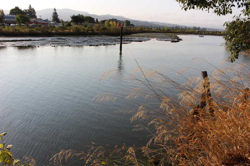 Peaceful Napa River along Riverside Drive in Napa
