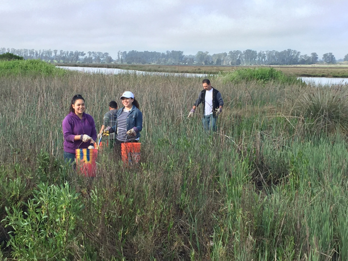 Napa Youth Stewardship members help clean up trash along the Napa River in Kennedy Park