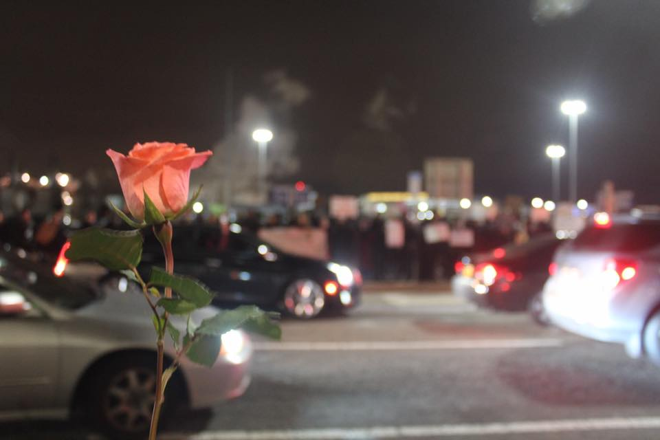 Cover image: - A woman sways a rose against the police barricades at JFK Terminal 4 as protesters gathered in hundreds to march against President Trump's executive ban. Click below for link to blog: