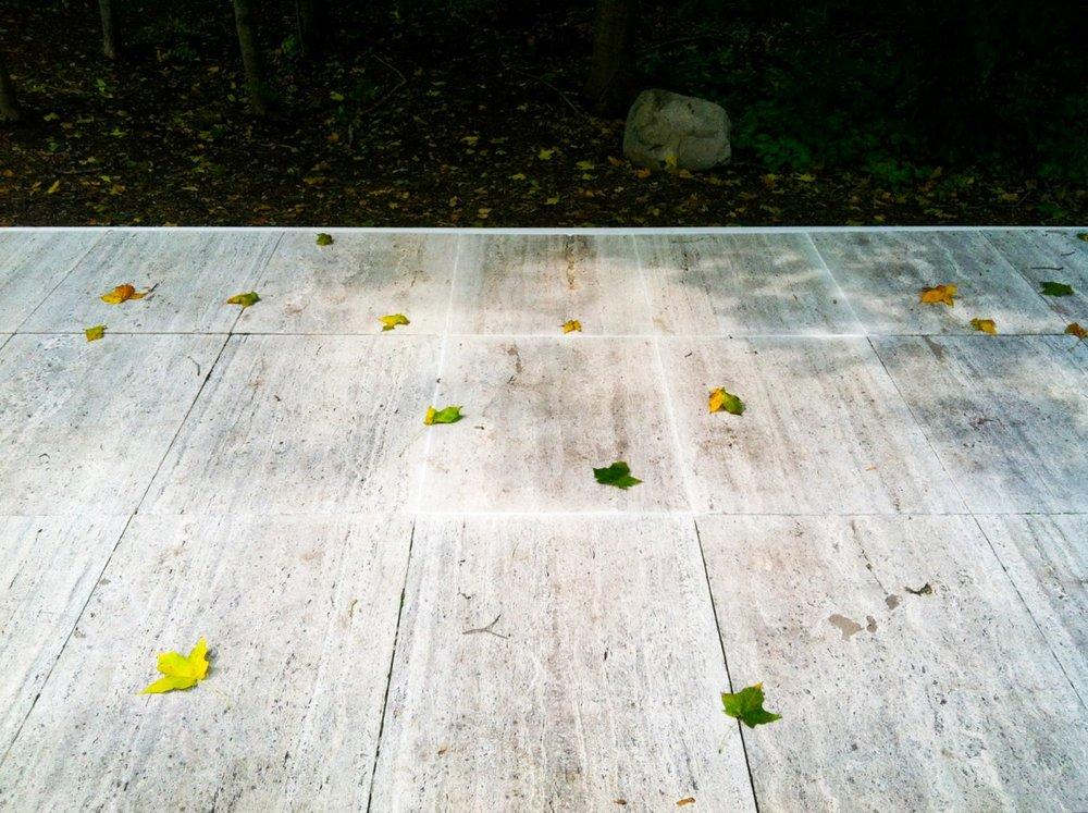 11-leavesgrid-1200x896.jpg