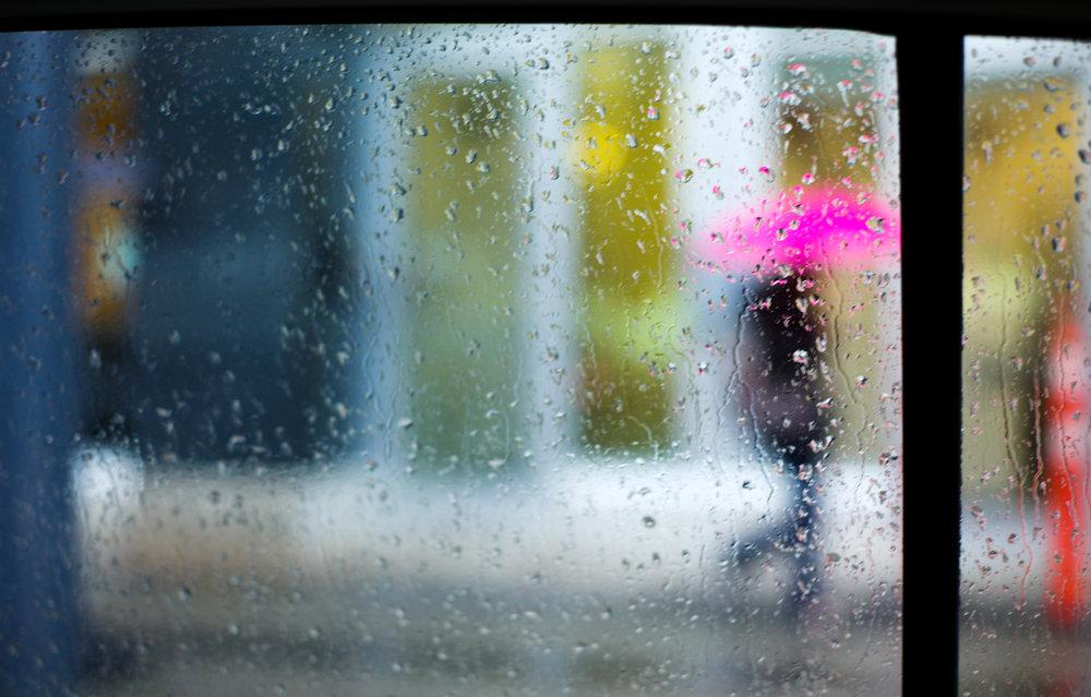 A Pink Umbrella
