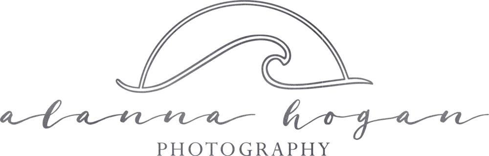 Alanna Hogan Photography Primary Logo Dark Silver.png