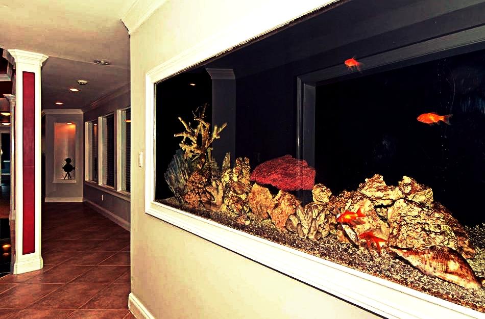 hallway with fish tank
