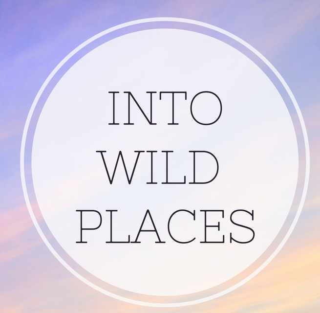 IntoWild Places (1).png