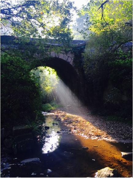 camino bridge.jpg
