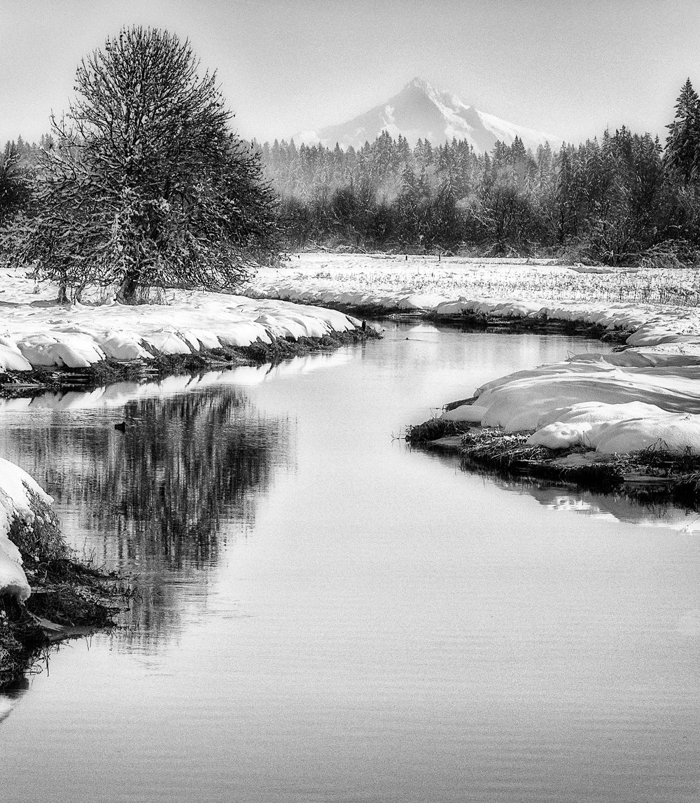 Salmon Creek and Mt hood BW.jpg