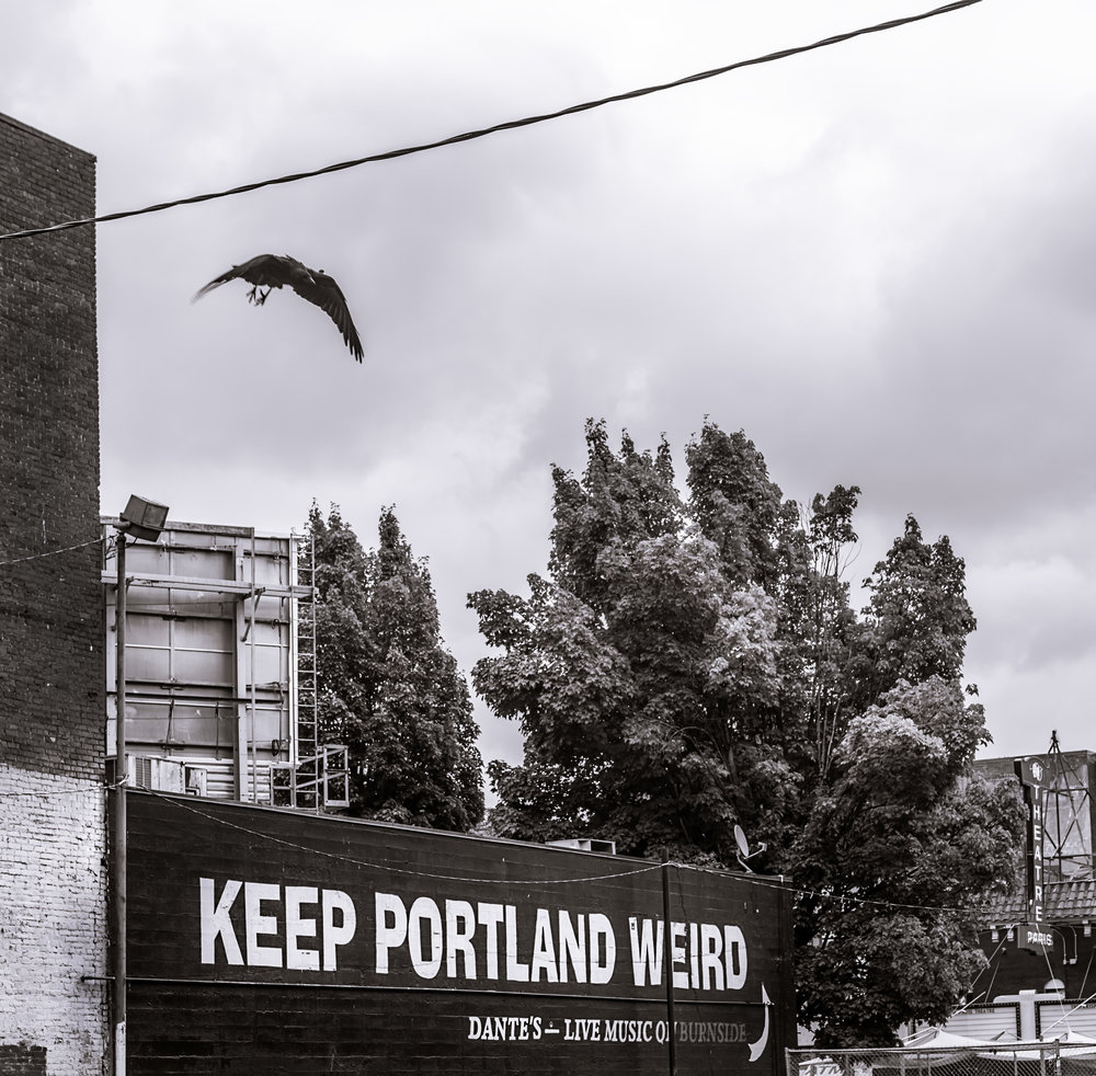 Keep Portland Weird with Crow.jpg