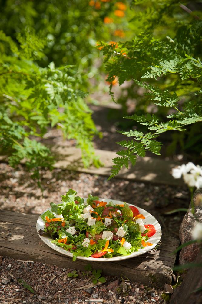 salaatti ruokablogi kesäruokaa