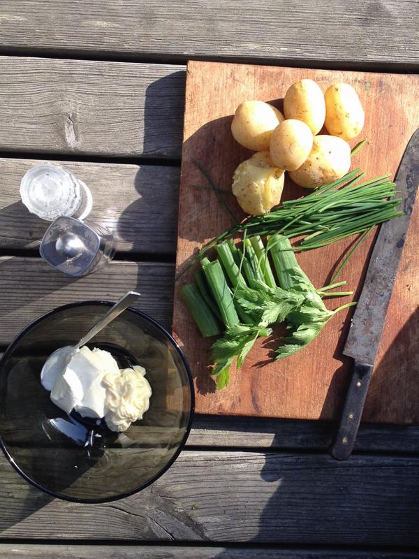 perunasalaatti ruogablogi