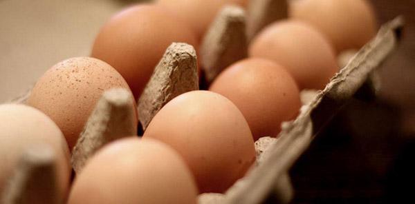 Larry Schultz Eggs carton.jpg