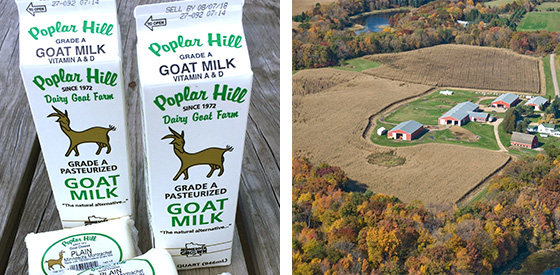poplar hill dairy goat farm CPW.jpg