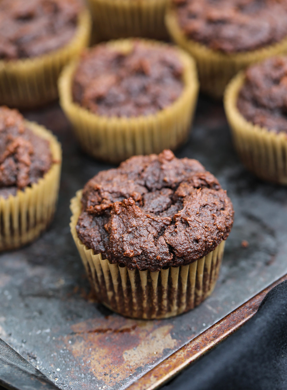 Chocolate Fudge Muffins.jpg