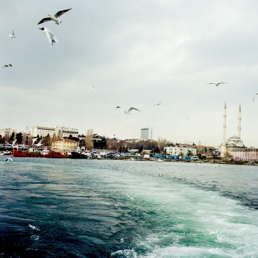 turkey-004.jpg