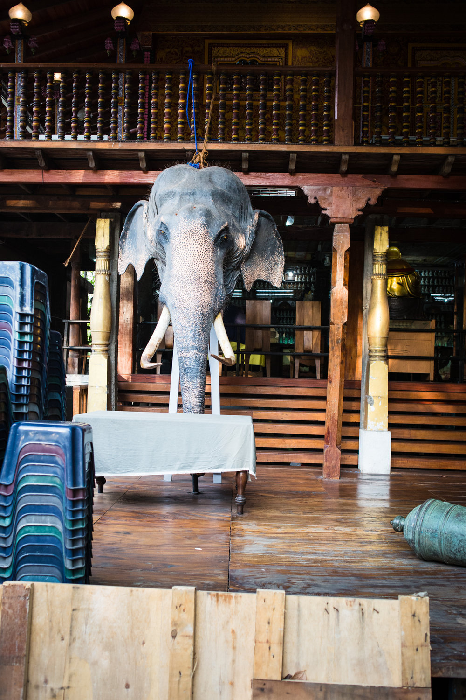 srilanka-2016-07.jpg