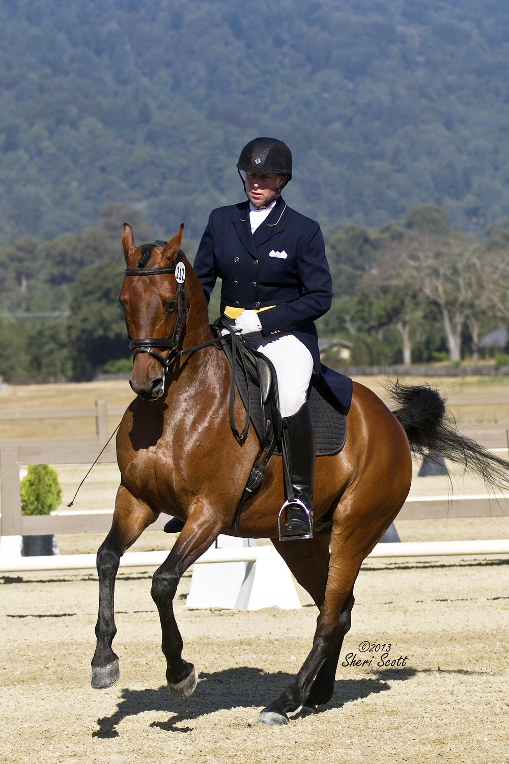 Anne Howard and Rondo pirouette show.jpg