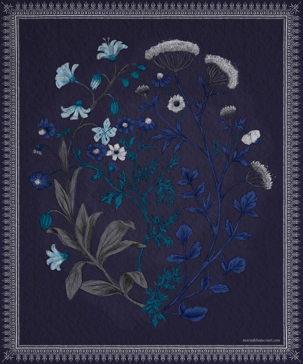 Marie-de-beaucourt-2018-Botanic-illustration-Bouquet-Bleu-WEB.jpg