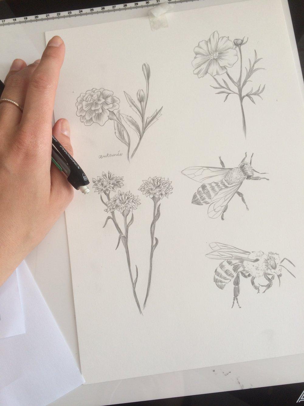 Marie-de-Beaucourt-illustration-editorial-Regain-ete2018-wip4.JPG