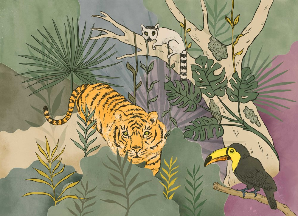 Marie-de-Beaucourt-Illustration-Jungle-web-2018.jpg