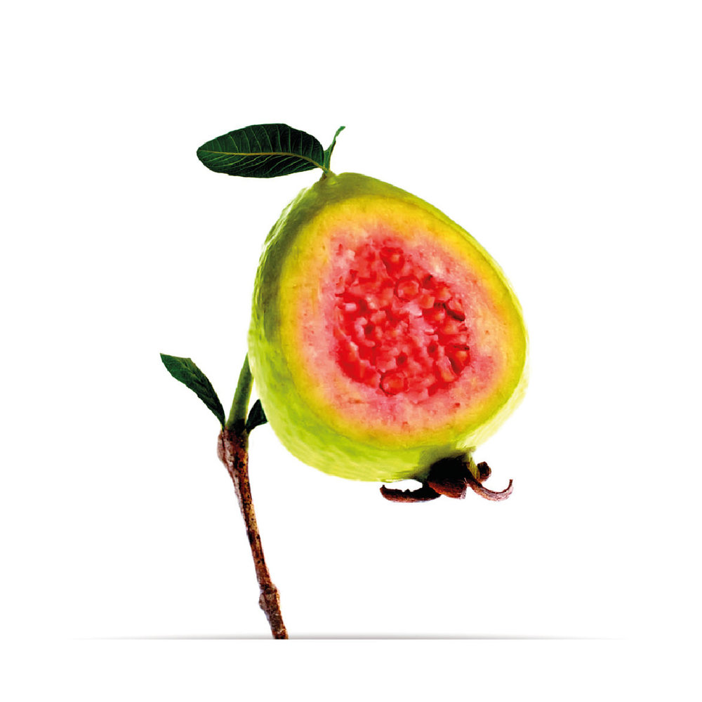 9_oNature_Flower_Guava.jpg