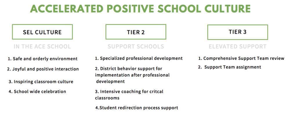 Accelerated-positive-school