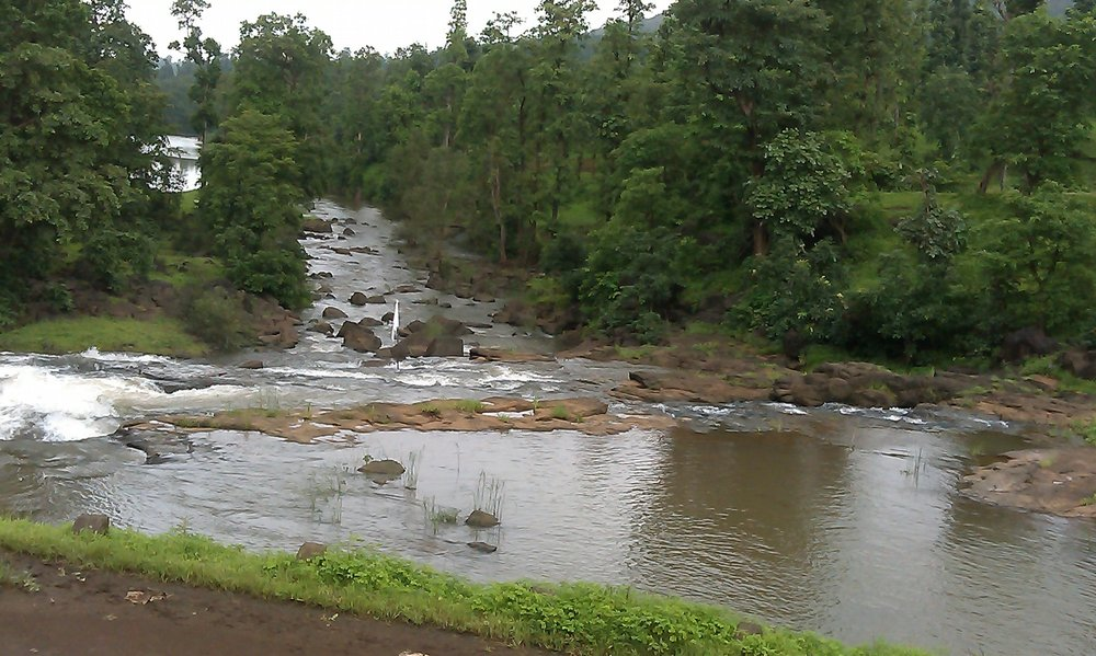 The Dangs forests. Photo: Gujarat tourism